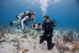 AUV, ROV, acoustic modem, underwater sensor, autonomous underwater vehicles , DSP Comm