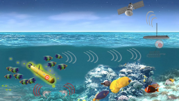 Underwater Internet of Things, IoT Underwater, DSP Comm